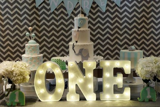 Andrew's Modern Elephant Themed First Birthday Party