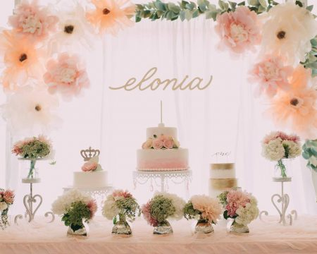 "Elonia's ""Light As Air"" Theme First Birthday Party"